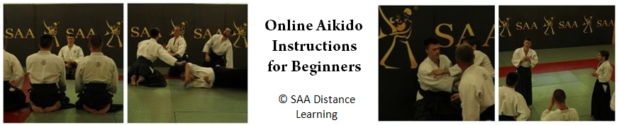 SAA Online Aikido Instructions for Beginners